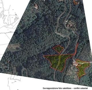 Immagine satellitare con mappa catastale